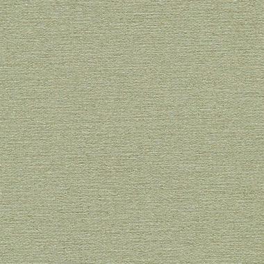 ЖЕМЧУГ 5540 оливковый 200см