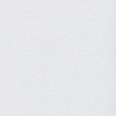 СИЛКСКРИН 0225 белый 240 см