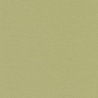 ОМЕГА 5586 оливковый