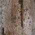 Вертикальные жалюзи АНТИК 7125 бронза