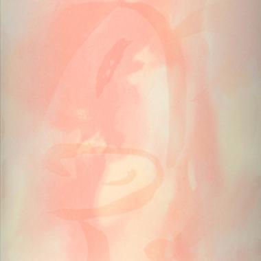 Вертикальные жалюзи АКВАМАРИН 4063 персиковый